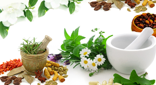 گیاهان دارویی موثر در درمان افسردگی